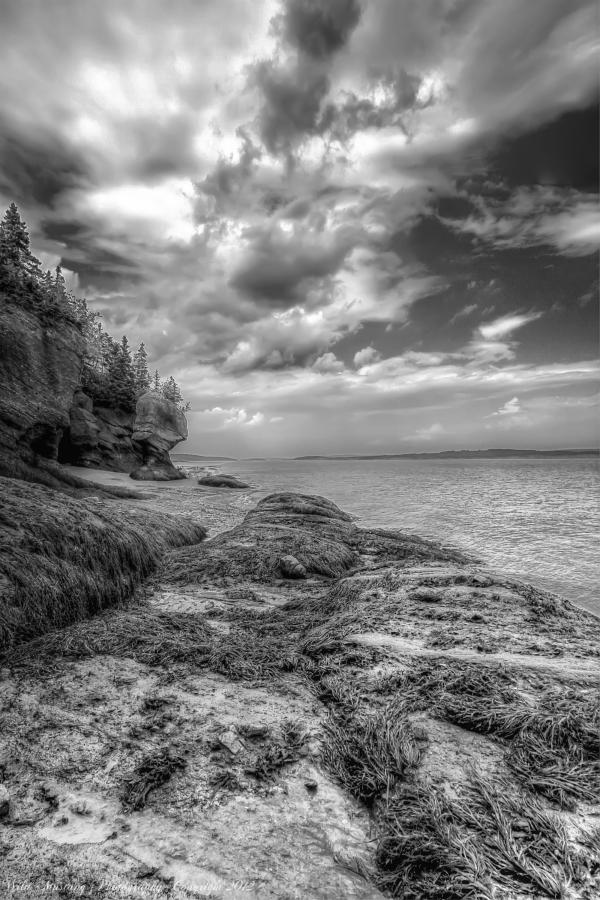 Ocean, Rocks ,Seaweed, clouds