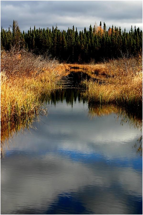 Cloudy Creek