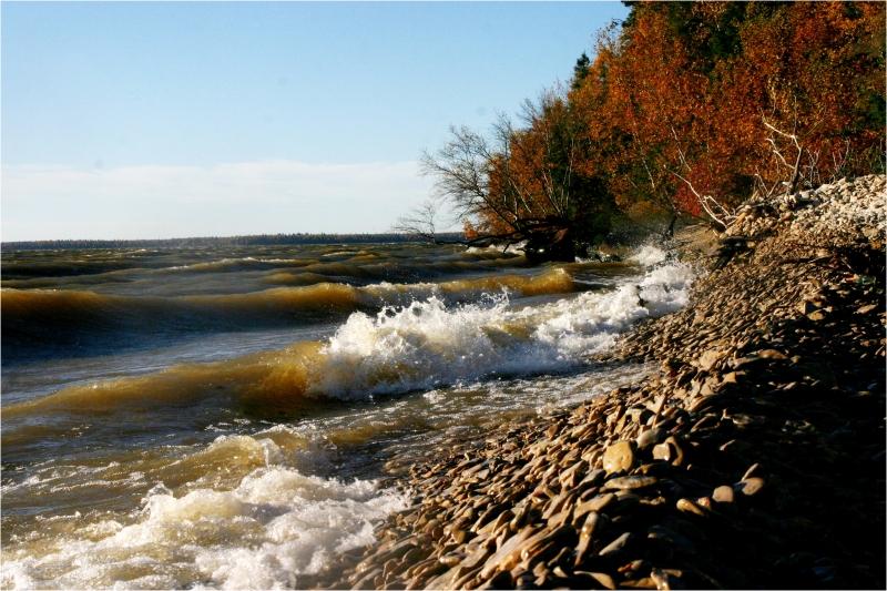 Autumn tide