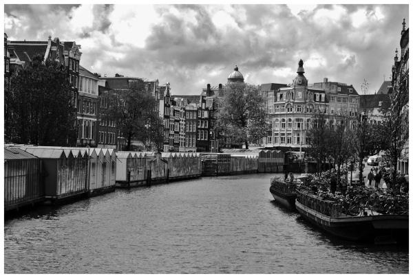 AMSTERDAM VIII