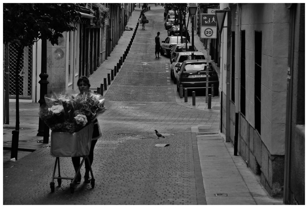 MADRID CCCXIX