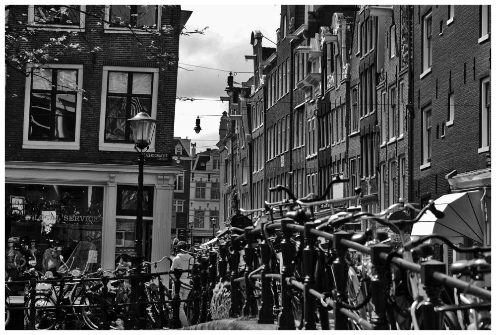 AMSTERDAM XVI