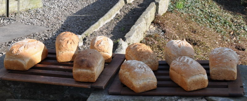 Le pain.Fin