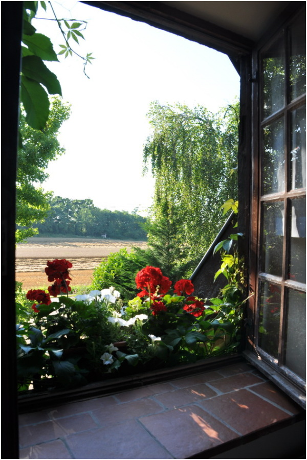 Par la fenêtre ouverte.