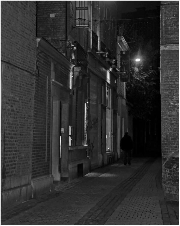 Le passager de la nuit. 2