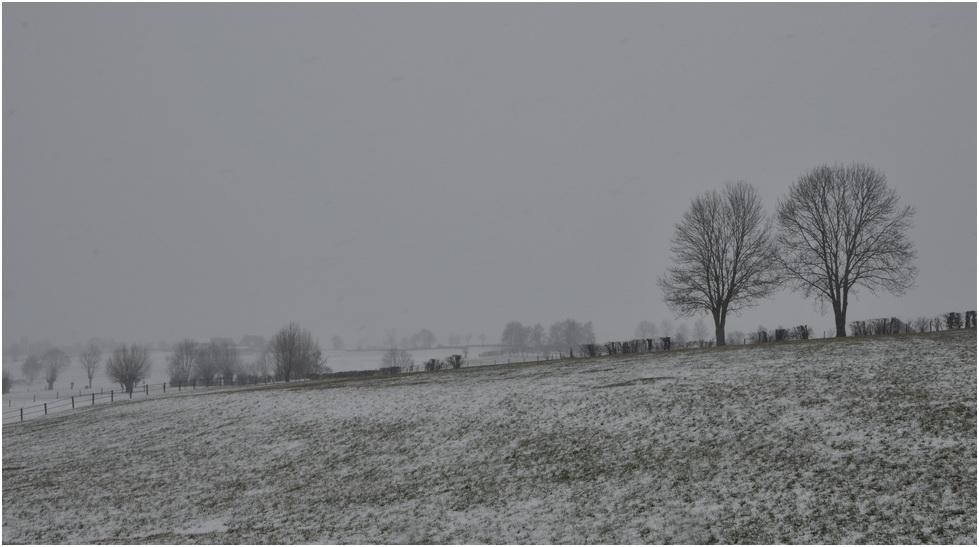 Nouvel épisode neigeux!