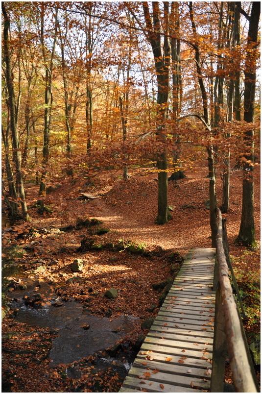 Le petit pont de bois...