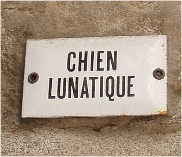 Attention...Chien lunatique!