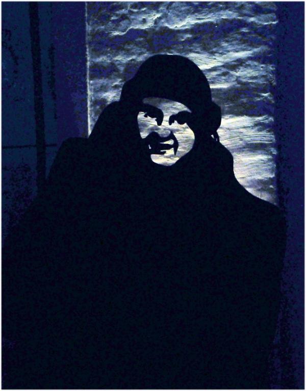 L'ombre mystérieuse