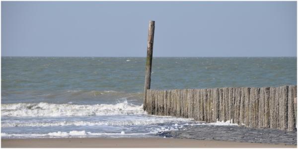 Sentinelle de la mer.