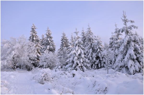 Première neige ce dimanche.