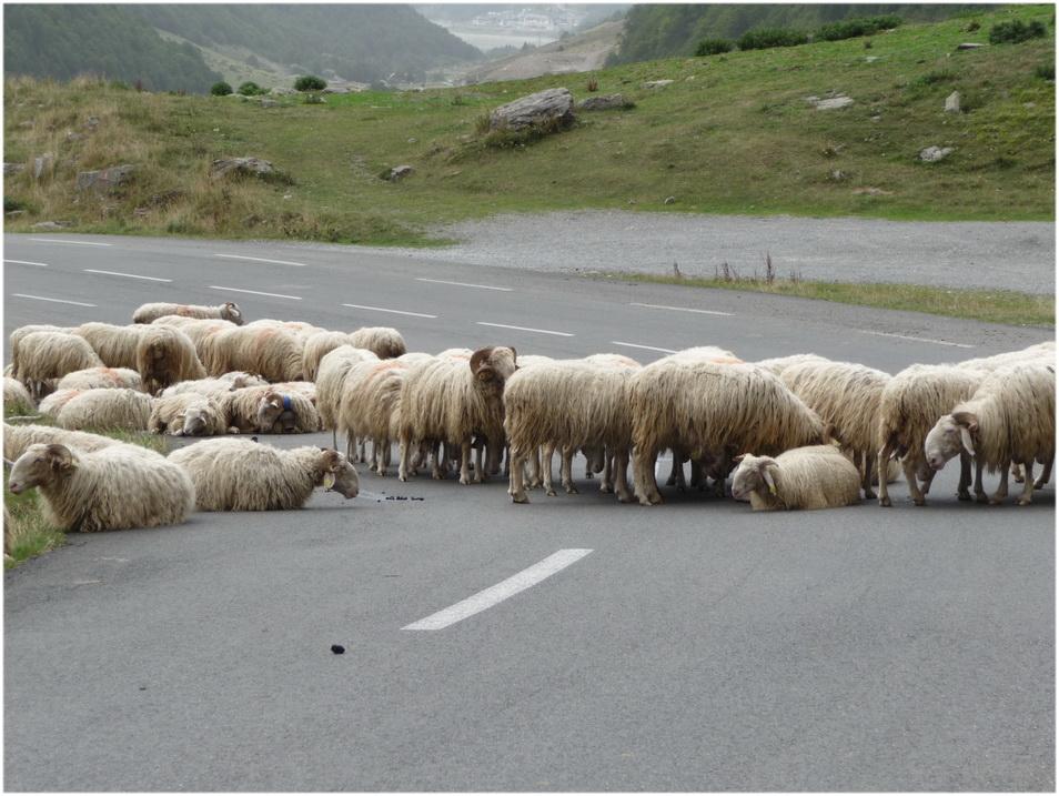 Piquets de grève.