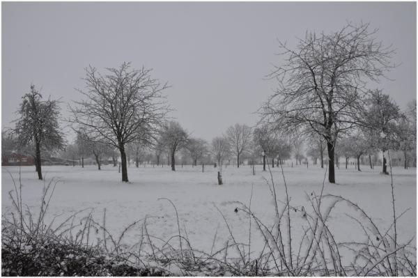 La neige revient!