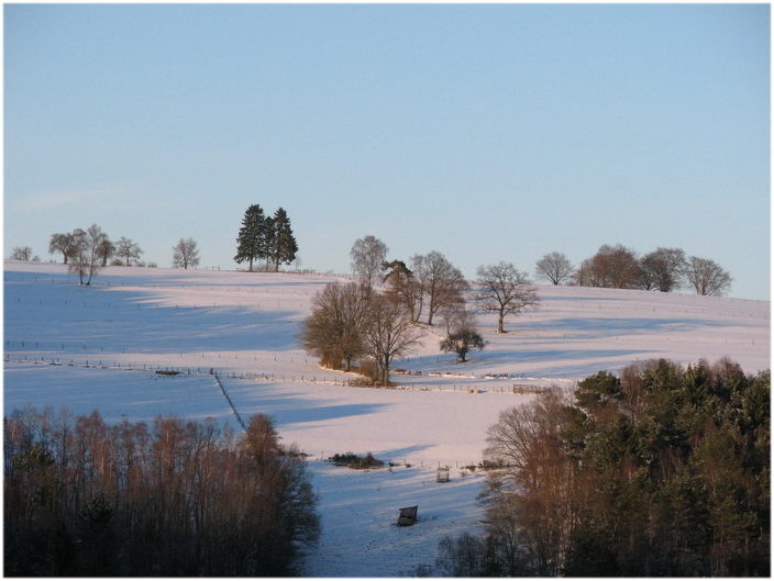 Soleil d'hiver sur la neige.
