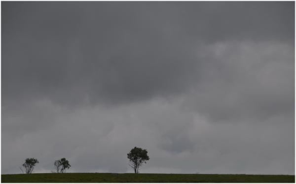 Nuages gris sur la fagne