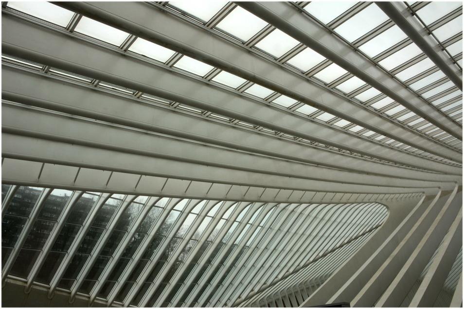 Verrières de la gare des Guillemins. 4