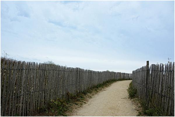 Le chemin des dunes.