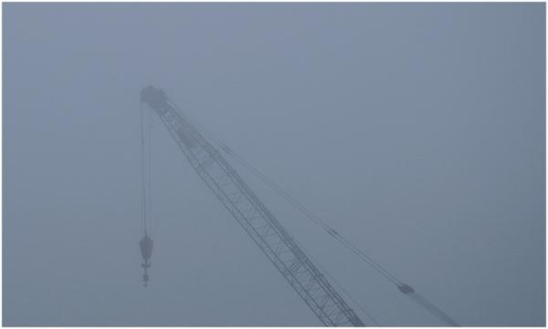 Le passage d'une grue dans la brume!