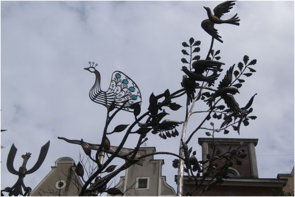 Iron Birds