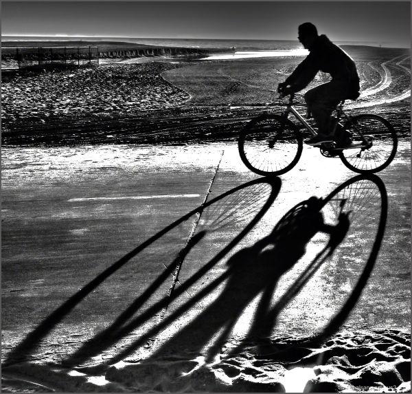 shadow traveler