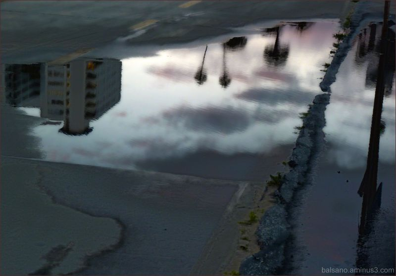 sunset puddle