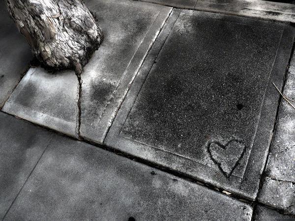 sidewalk (he)art