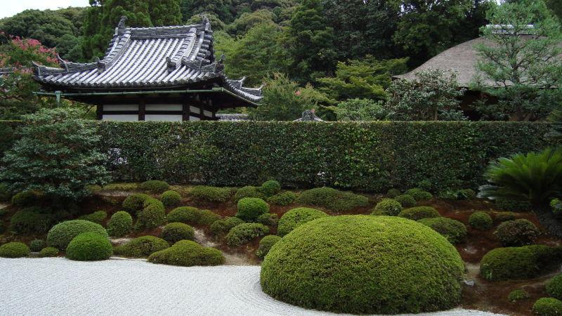 Sandy Garden