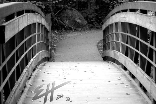 The Bridge in Fall