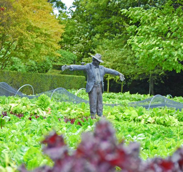A Bronze Scarecrow