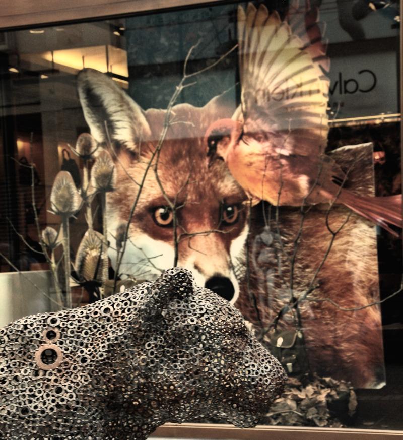 Wildlife In The City