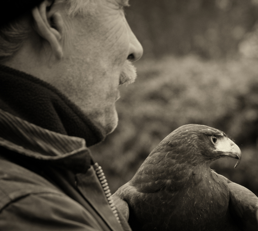Man And Bird