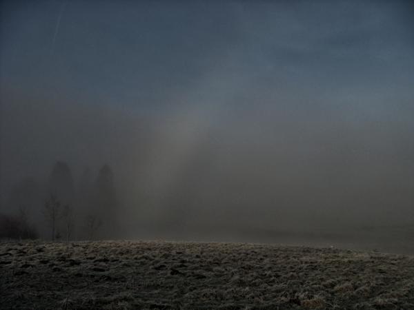 A Rainbow In The Fog?