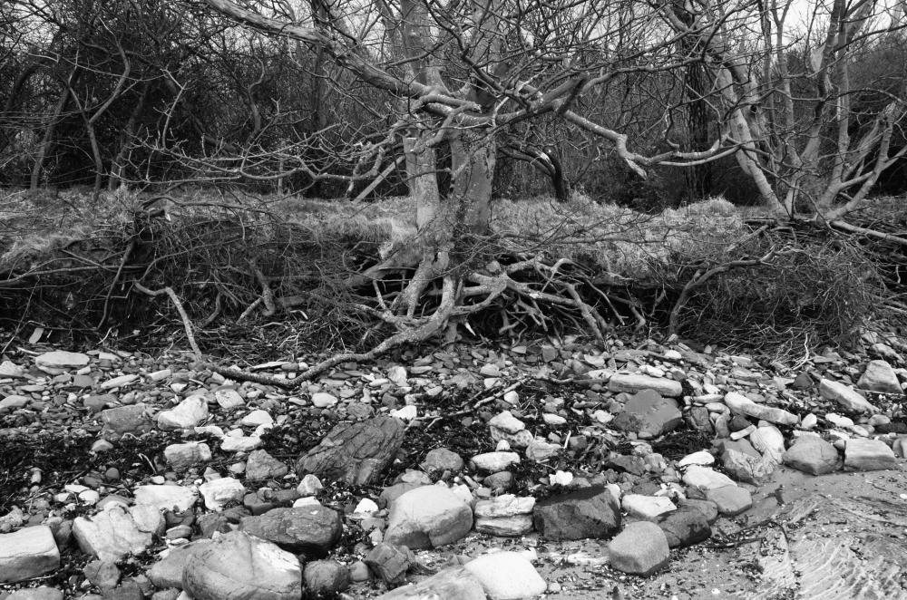 Surviving Erosion