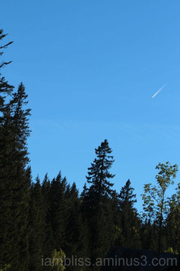 Spot in the sky
