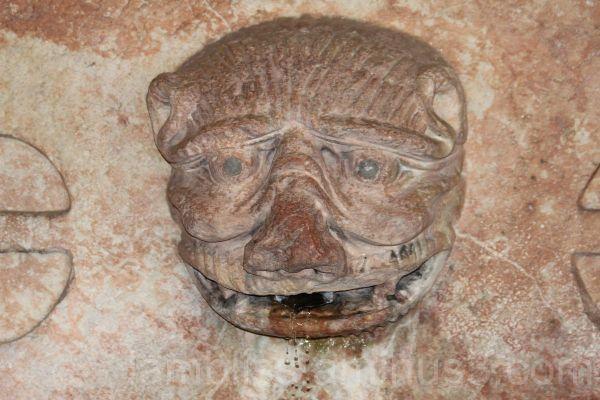 The fountain head