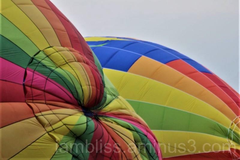 A dash of colours