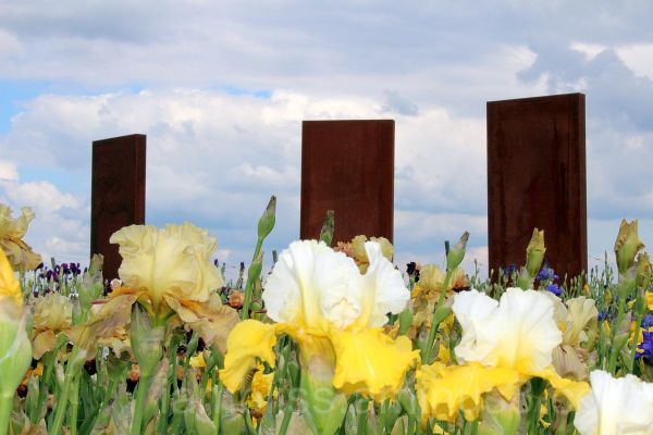 flowers and sculpture