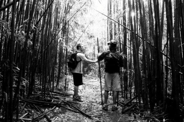 Manoa Trail
