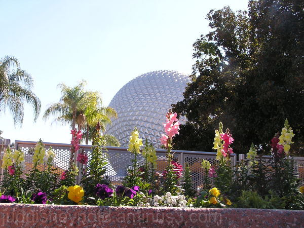 walt disney world wdw jud flowers epcot F&G
