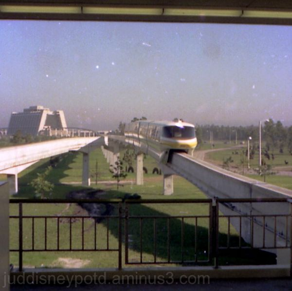 Monorail, Contemporary, topiary, Magic Kingdom TTC