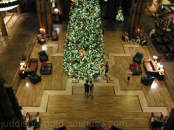 WDW, Disney, Jud, Wilderness Lodge, Christmas Tree