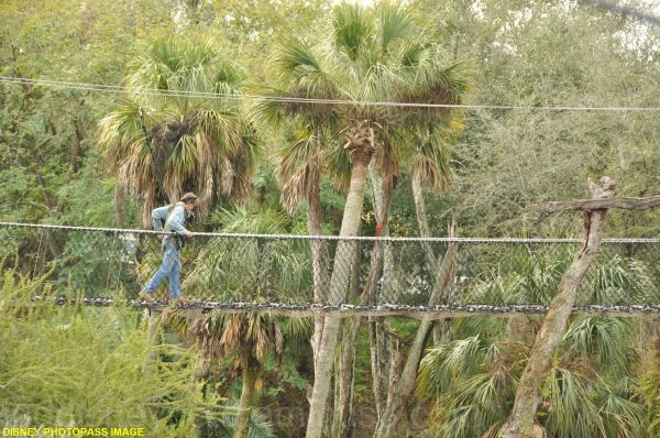 WDW, Animal Kingdom, Wild Africa Trek, foot bridge