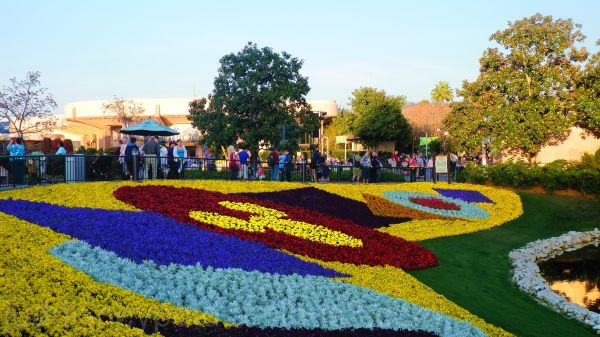 WDW, Disney, Epcot, Flower and Garden Festival