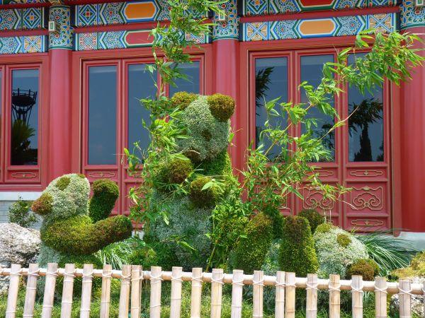 WDW, Jud, Epcot, World Showcase, Flower & Garden