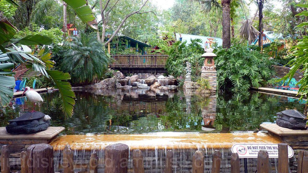 WDW, Disney, Jud, Animal Kingdom