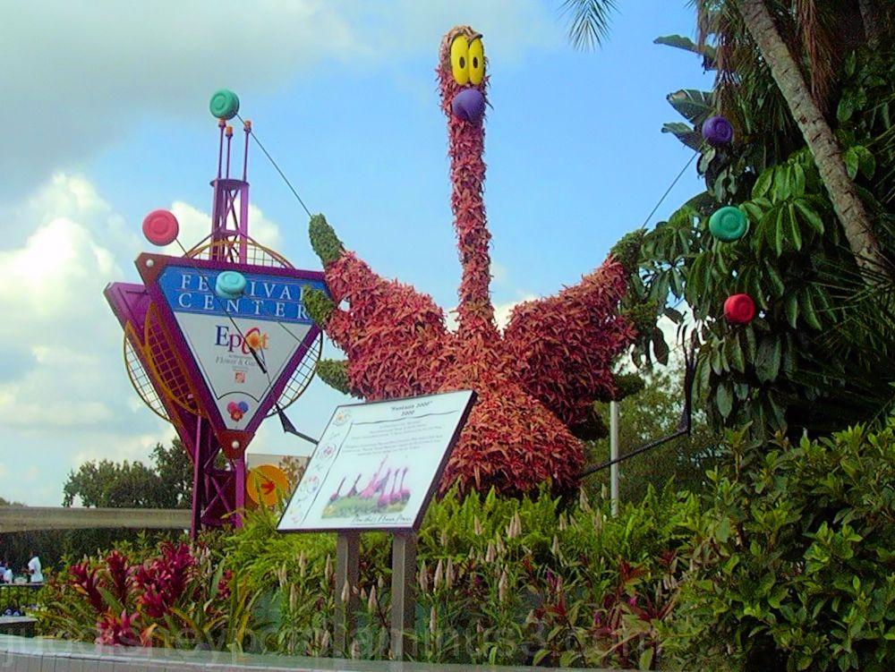 Jud, Disney, Walt Disney World, Epcot, Flower and