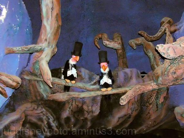 Jud, Disney, Magic Kingdom