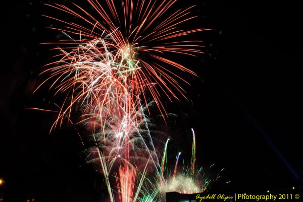 Fireworks 2011 5