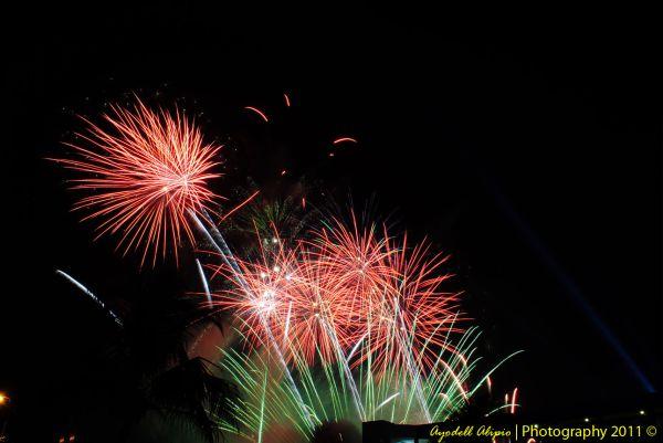 Fireworks 2011 7