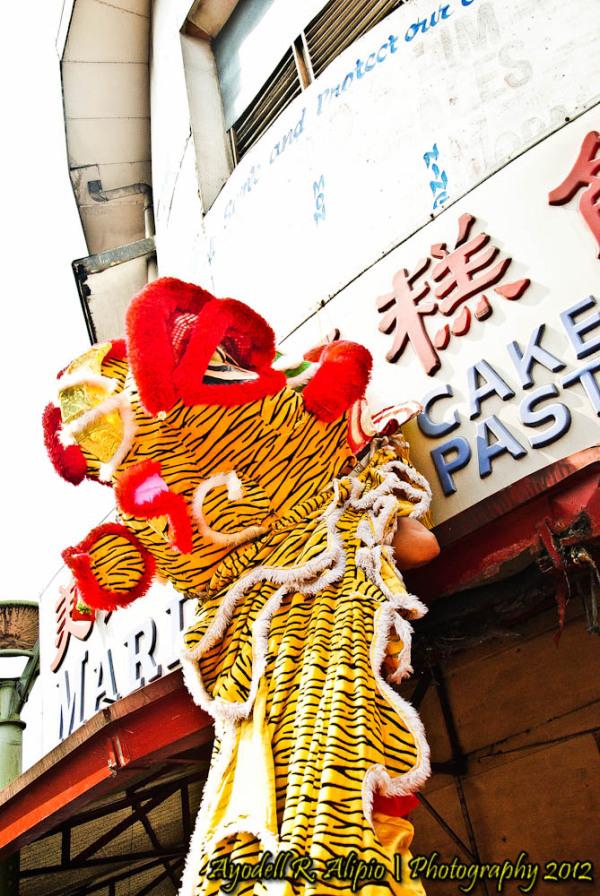 Chinese New Year, Dragon Dance 15